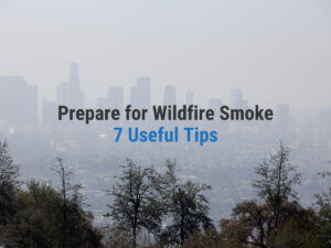 7 Useful Tips on How to Prepare for Wildfire Smoke