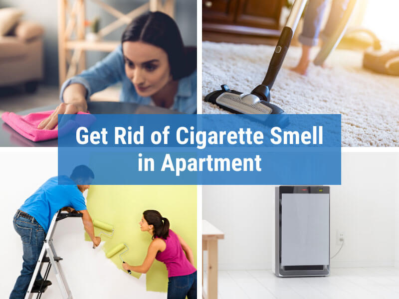 Ways to Get Rid of Cigarette Smell from an Apartment