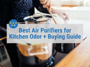Best Air Purifiers for Kitchen Odor