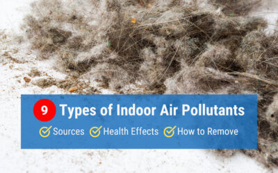 9 Types of Indoor Air Pollutants: Sources, Health Effects & Removal Tips