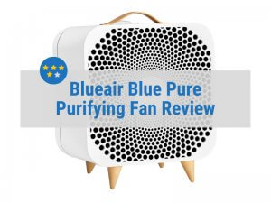 Blueair Blue Pure Fan Review