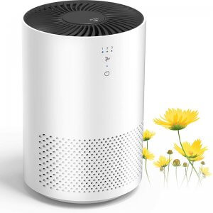 Intelabe EP1080 Air Purifier